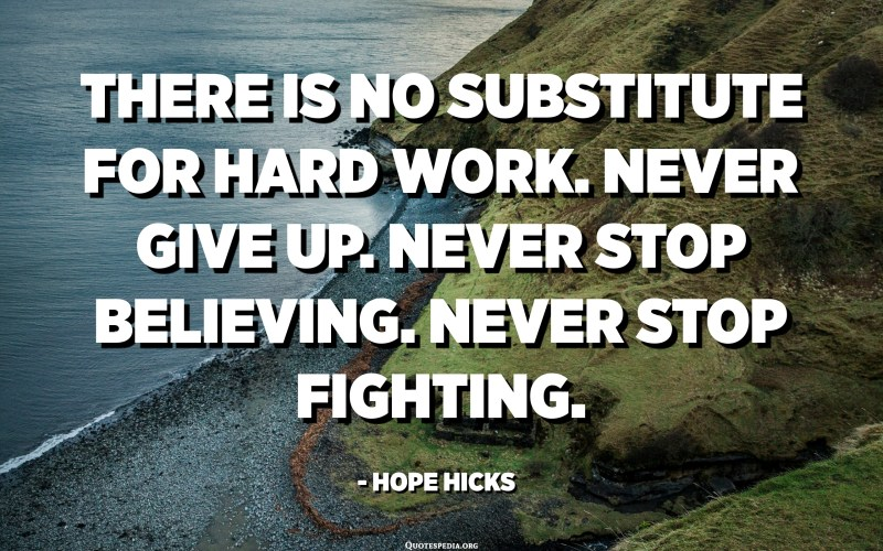 There is no substitute for hard work. Never give up. Never stop believing. Never stop fighting. - Hope Hicks