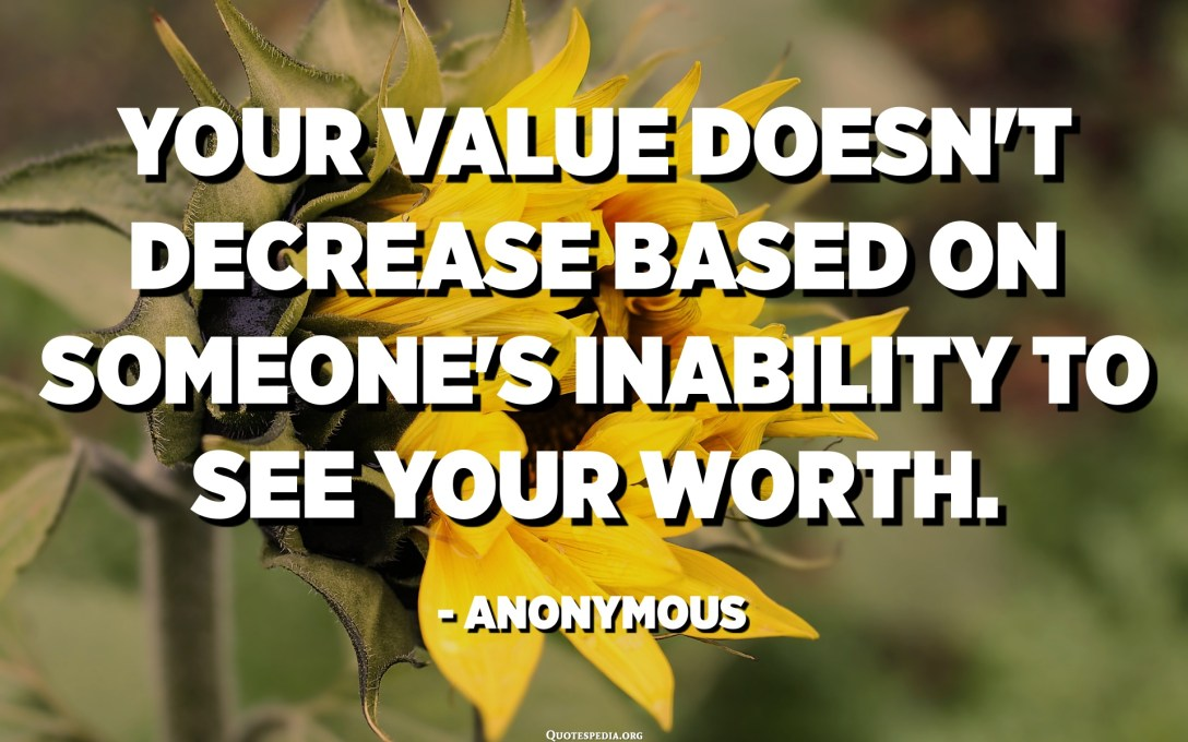 Your value doesn't decrease based on someone's inability to see your worth. - Anonymous