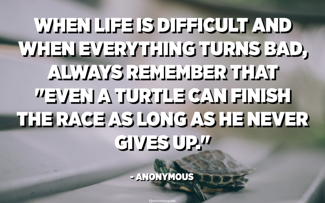 """When life is difficult and when everything turns bad, Always remember that """"Even a turtle can finish the race as long as he never gives up."""" - Anonymous"""