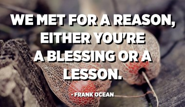 We met for a reason, either you're a blessing or a lesson. - Frank Ocean