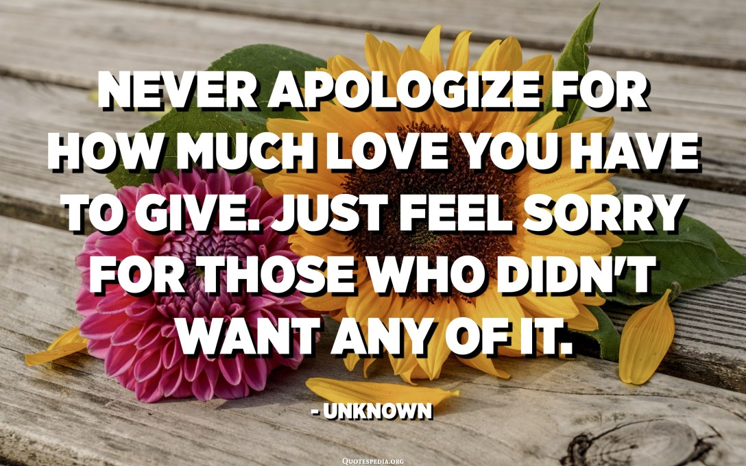 Never apologize for how much love you have to give. Just feel sorry for those who didn't want any of it. - Unknown