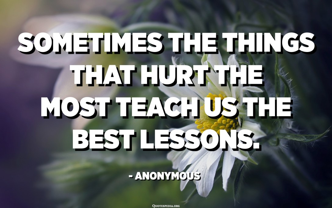 Sometimes the things that hurt the most teach us the best lessons. - Anonymous