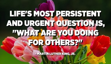 """Life's most persistent and urgent question is, """"What are you doing for others?"""" - Martin Luther King, Jr."""