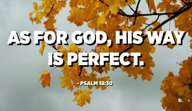 As for God, His way is perfect. - Psalm 18:30