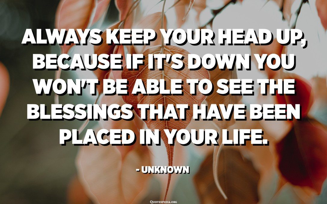 Always keep your head up, because if it's down you won't be able to see the blessings that have been placed in your life. - Unknown