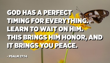 God has a perfect timing for everything. Learn to wait on Him. This brings Him honor, and it brings you peace. - Psalm 27:14