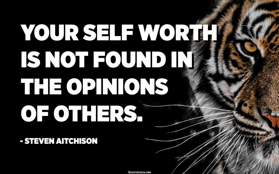 Your self worth is not found in the opinions of others. - Steven Aitchison