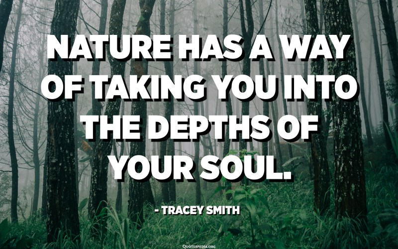 Nature has a way of taking you into the depths of your soul. - Tracey Smith