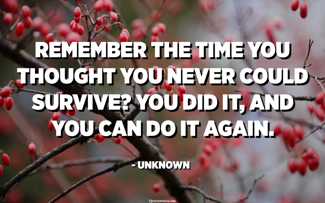 Remember the time you thought you never could survive? You did it, and you can do it again. - Unknown