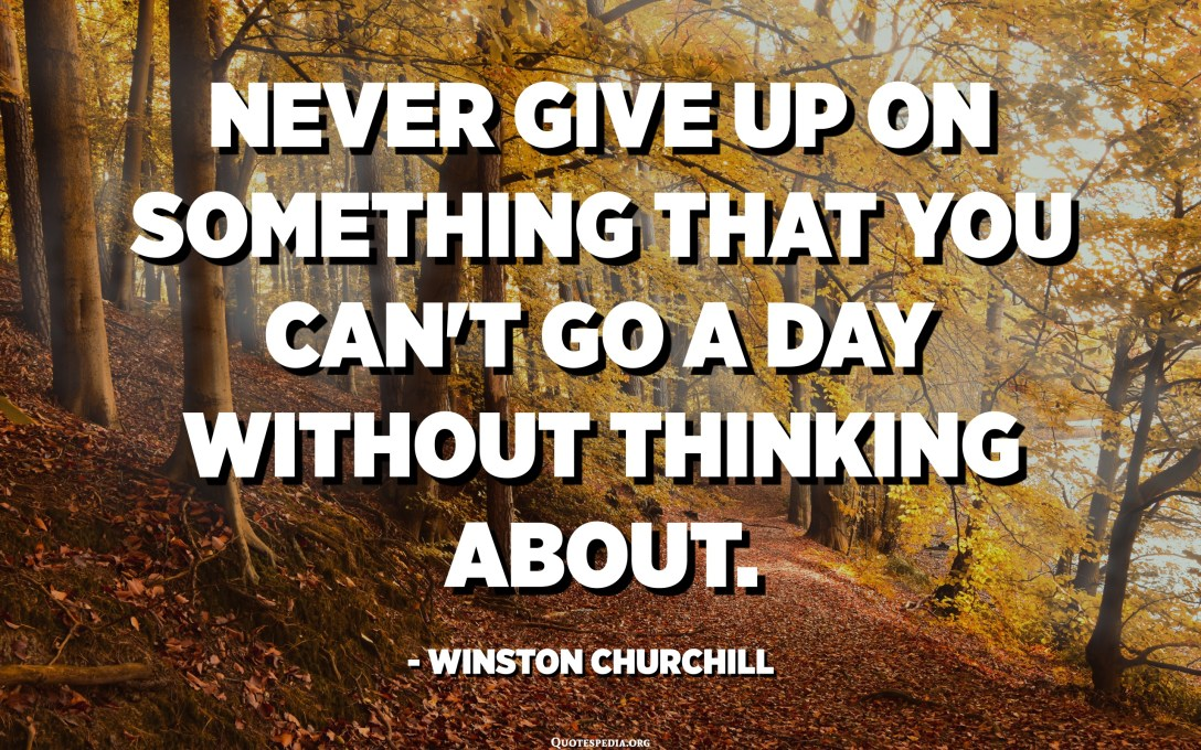 Never give up on something that you can't go a day without thinking about. - Winston Churchill