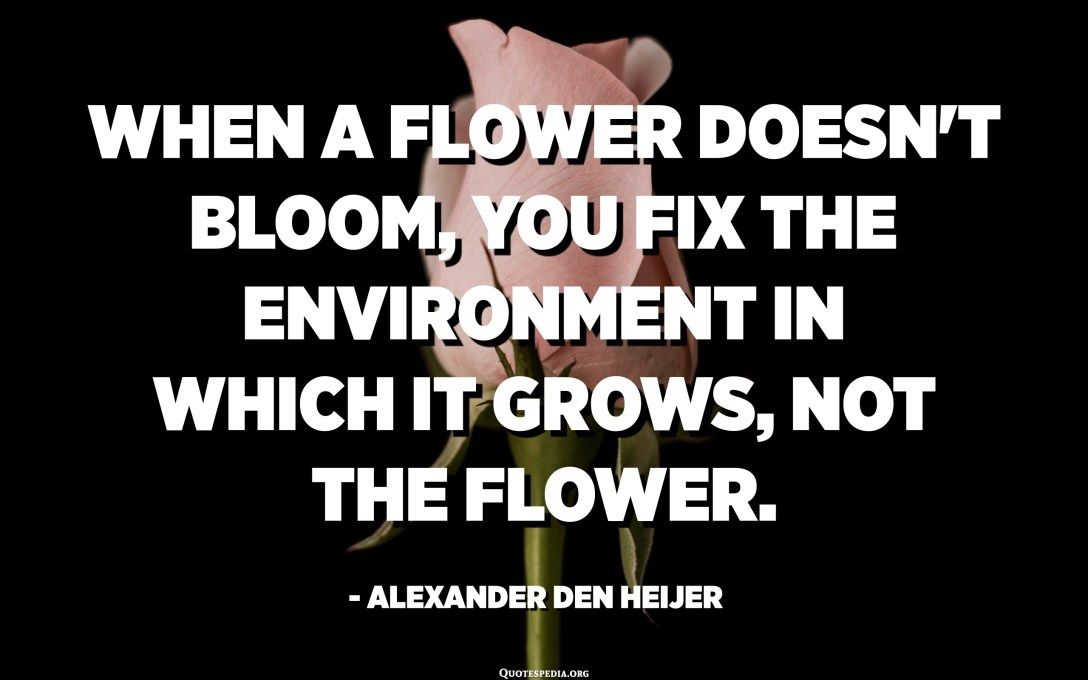 When a flower doesn't bloom, you fix the environment in which it grows, not the flower. - Alexander Den Heijer