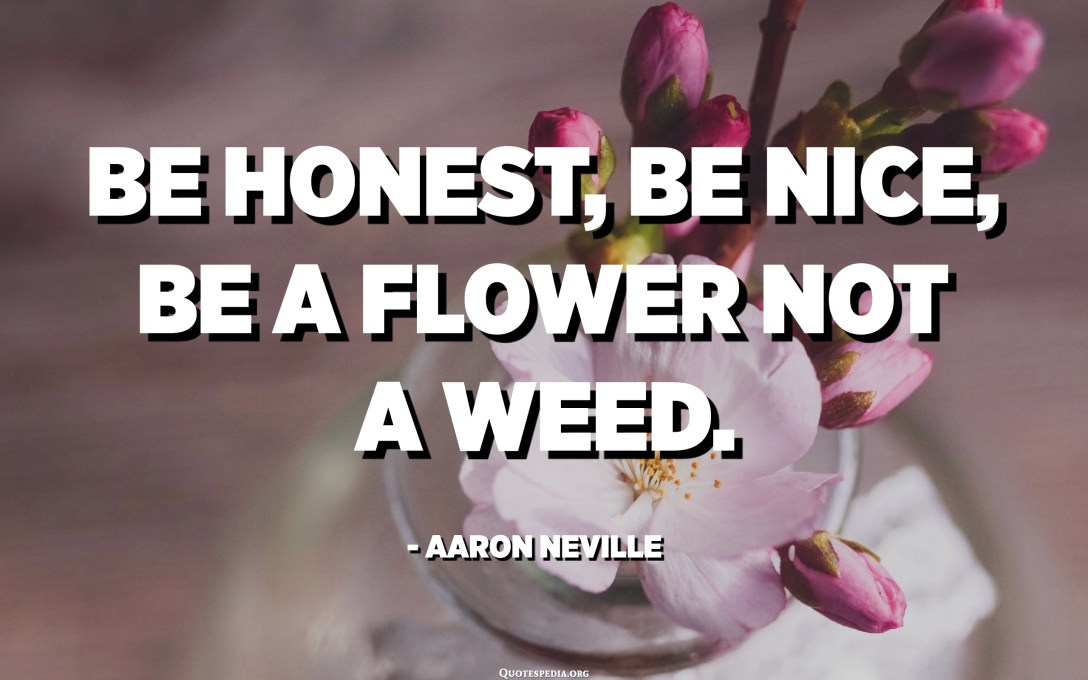 Be honest, be nice, be a flower not a weed. - Aaron Neville