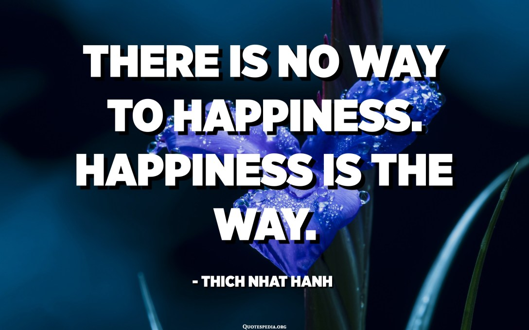There is no way to happiness. Happiness is the way. - Thich Nhat Hanh