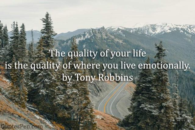 quality-of-your-life-quote