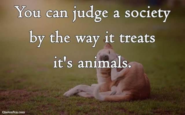 gandhi-ji-quotes-on-animals