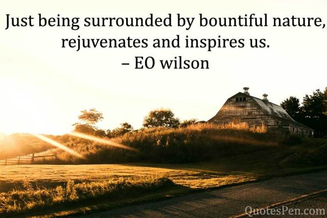 bountiful-nature-Good Morning Nature Quotes