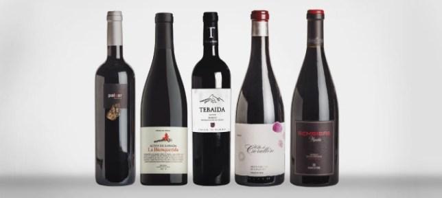 vinos bierzo