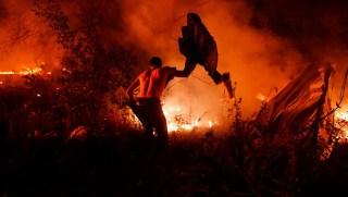 fuegos galicia