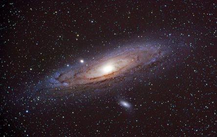 vida cosmos