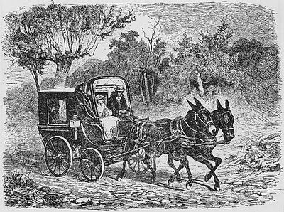 carro de caballos antiguo
