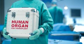 trasplante-generico