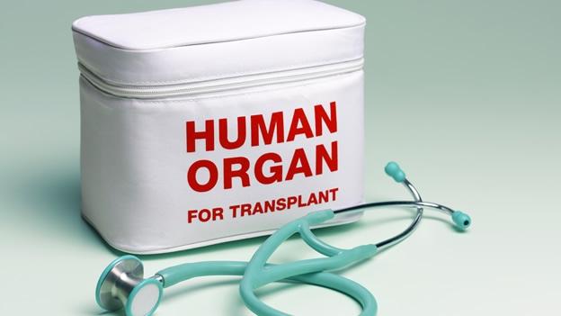 Preguntas sobre trasplantes y donación de órganos