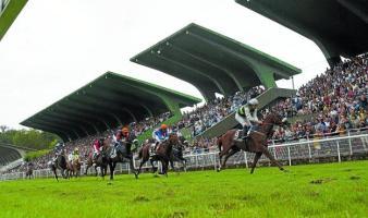 carreras caballos