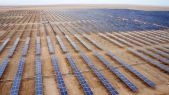 Parque-fotovoltaico-panel-solar-580x328