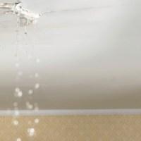 Reparar y pintar techos y paredes deteriorados por el agua (parte 1)