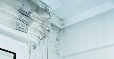 humedad techo y pared