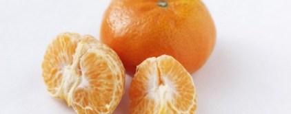 mandarina-Octubrina-760x300