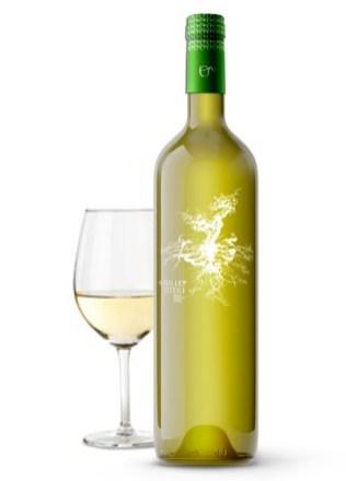 vino-blanco-rioja-2