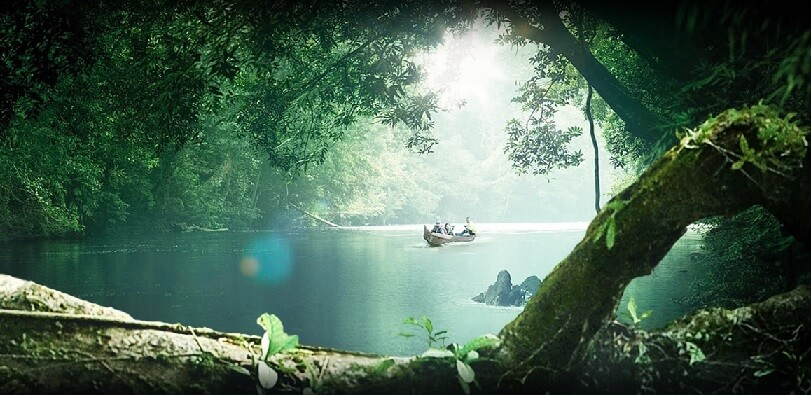 image of Taman Negara