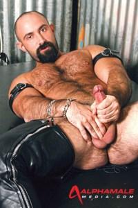 gay amateur studs