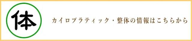 埼玉県さいたま市Plus-R/カイロプラティック・整体へのリンク