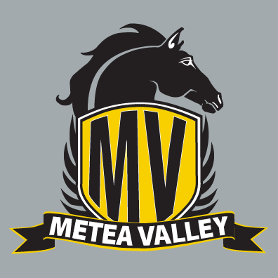 Metea Valley