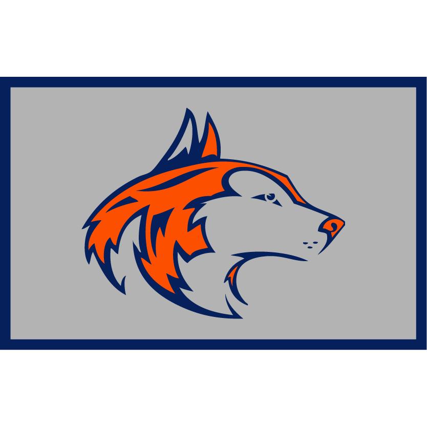 customizable flag