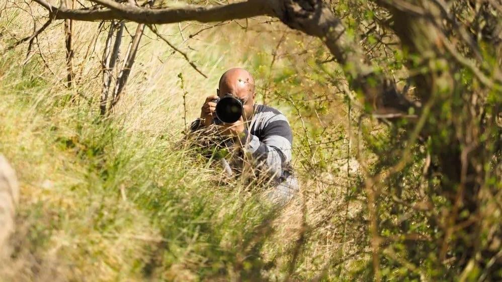 things to do in dharamshala - birding at pong dam