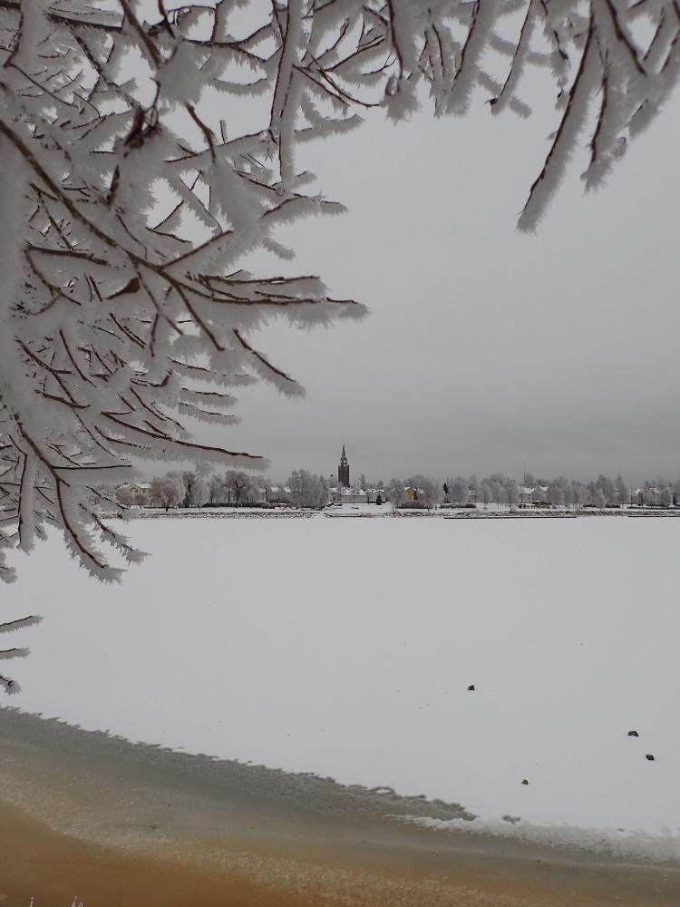 Talven kehys - Leena Niva