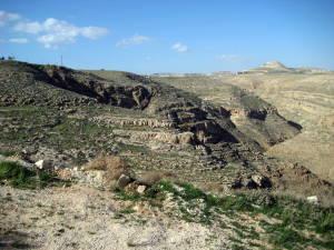 Tekoa Canyon