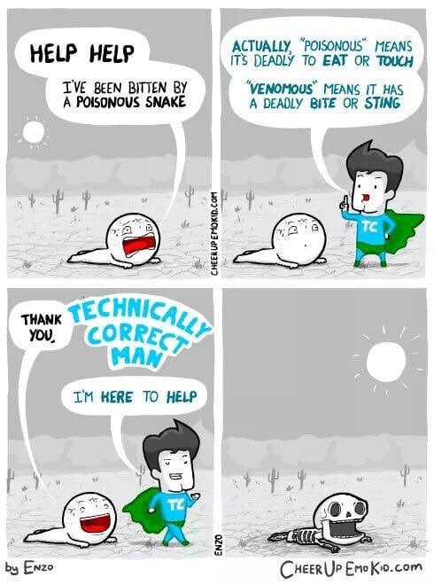 technically correct man