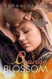 Orange Blossom by Sarah Daltry