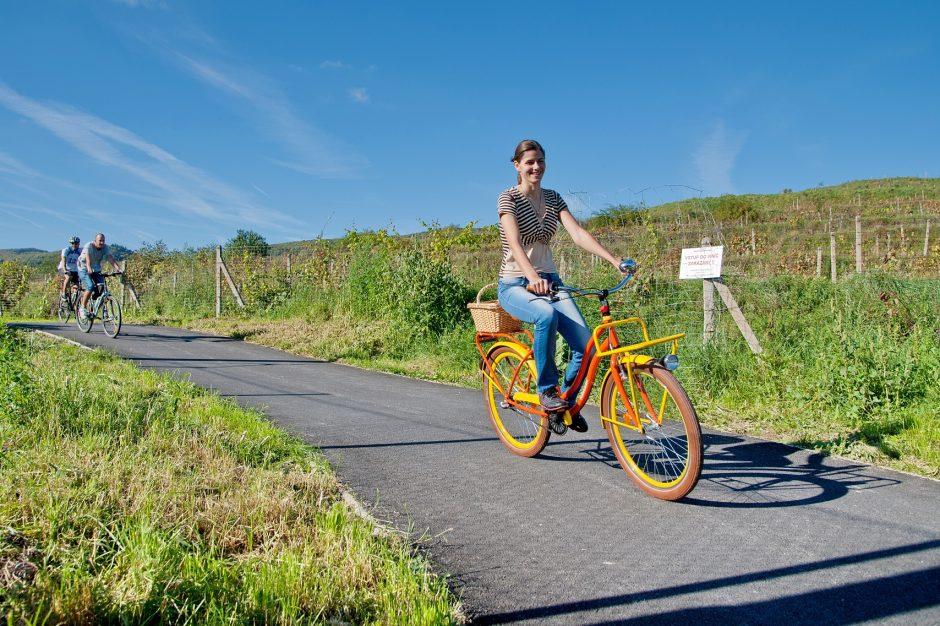 Cyklotrasa JuRaVa pri Pustom kostolíku medzi Račou a Sv. Jurom
