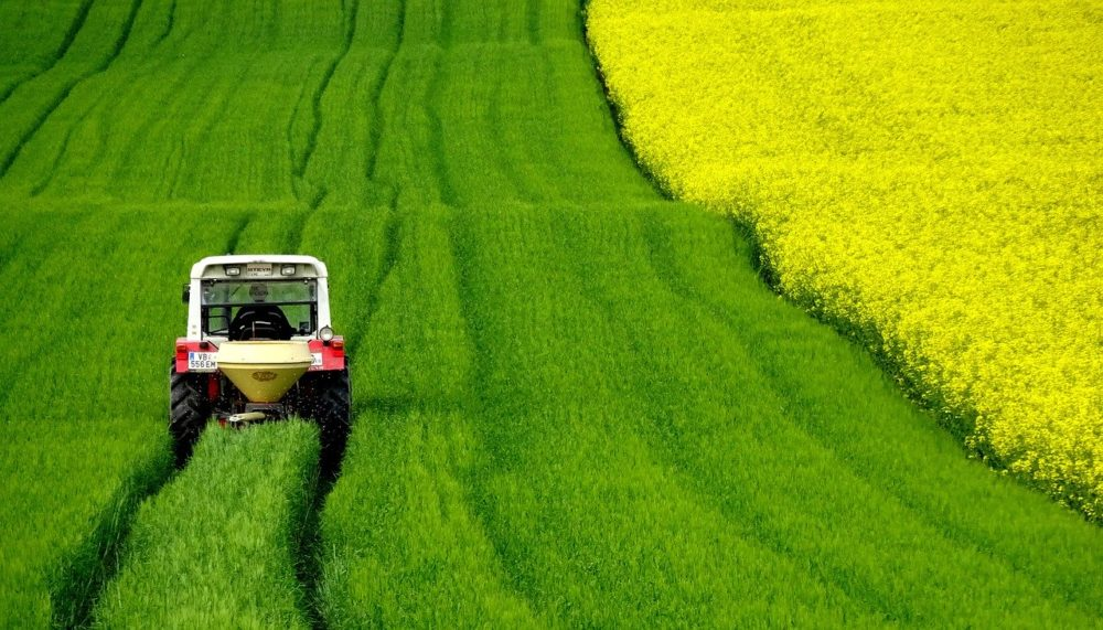 Imprese: Agricoltura