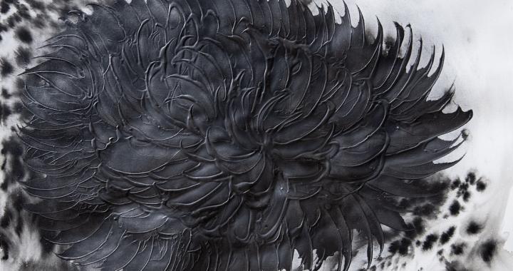 Leda e il Cigno Nero: Covid19 VS forza dell'umanità