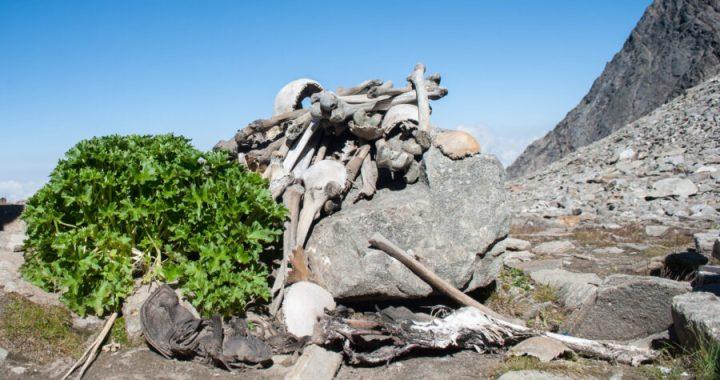Roopkund: le 800 ossa del lago glaciale