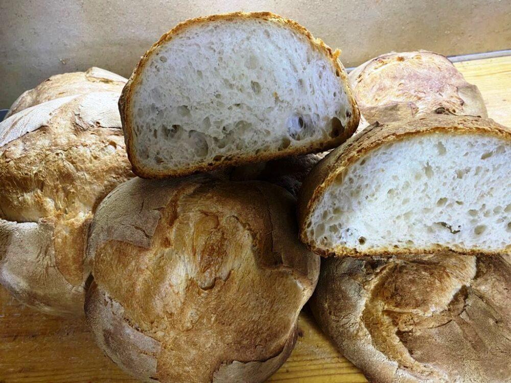 Pane di Altamura patrimonio dell'Unesco, ci si pensa