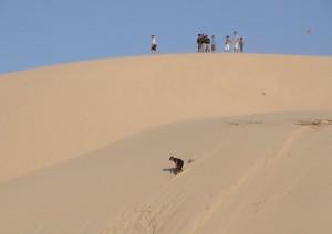 Jericocoara / Escursione In Buggy Tra Le Dune.jpg