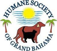Grand Bahama Half Marathon
