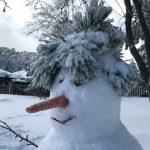 A Snowman in Winter